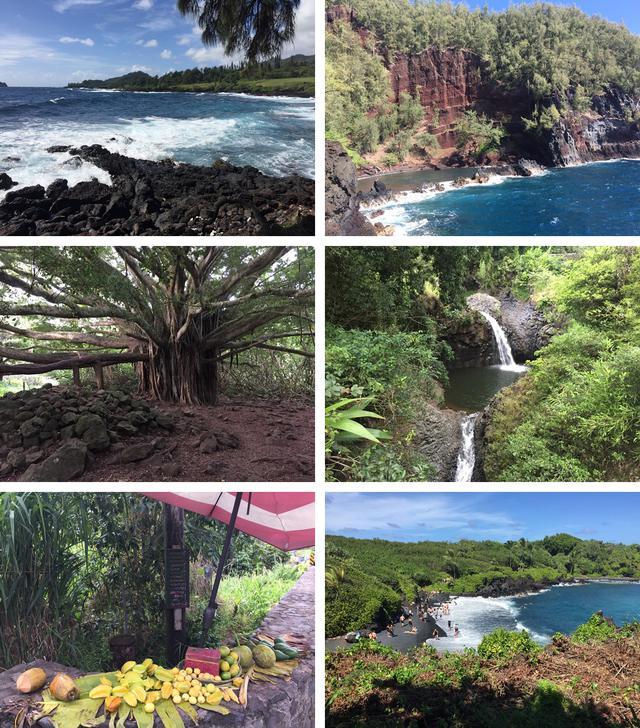 画像12: 現地スタッフが体験!~マウイ島の自然を満喫~