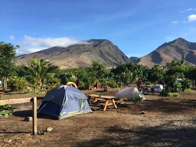 画像3: 現地スタッフが体験!~マウイ島の自然を満喫~