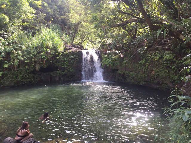 画像10: 現地スタッフが体験!~マウイ島の自然を満喫~