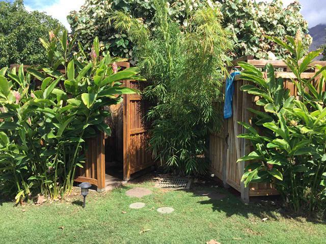 画像5: 現地スタッフが体験!~マウイ島の自然を満喫~