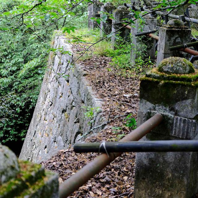 画像: 松山城の特徴のひとつ「登り石垣」。上から見るとほどんと木々に隠れてわかりません。