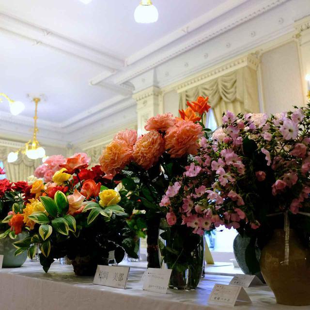 画像: 毎年開催されるバラ展は品評会なども行われる一大イベント。クリームカラーの室内には良い香りが漂い、建物との相性もぴったりのエレガントな雰囲気でした。