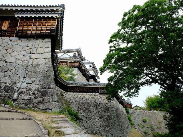 画像: お次は松山城!現存十二天守のひとつ。