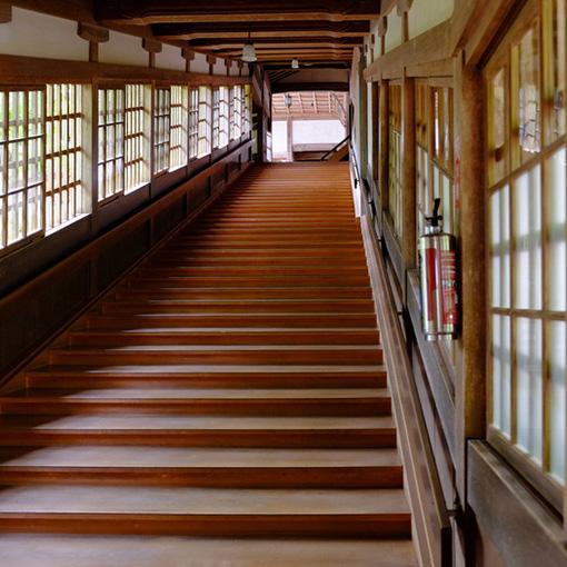 画像: 山腹に沿って作られた階段はどこもピカピカに磨き上げられています。階段は長く続きますが、比較的段差が低くなっています。毎朝のおつとめのお掃除タイムに僧侶の皆さんがキレイにしてくださっているとのこと。