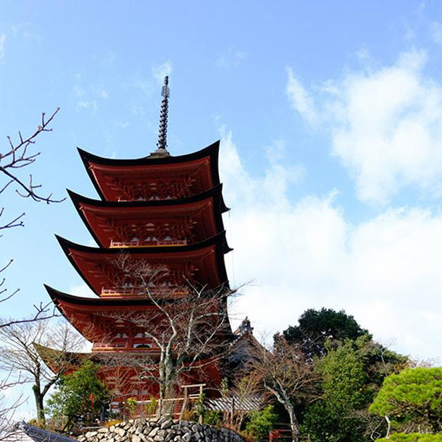 画像: 宮島のお土産屋さんが並ぶ通りを抜けてまず向かったのは五重塔。この五重塔は誰が作らせたのかはわかっていません。1407年創建で、国の重要文化財に指定されています。宮島のお土産屋さんが並ぶ通りを抜けてまず向かったのは五重塔。