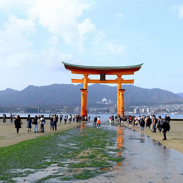 画像: 干潮の時間帯に浜へ降りて大鳥居近くまで行ってみます。