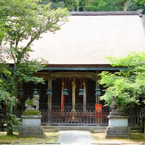 画像: 木々に囲まれた境内に建つ、重々しい剛健な本殿。本殿前の、基礎部分だけを残しているところにはかつて拝殿があったとのことです。屋根はこけら葺きになっていて陽の光が当たってピカピカ光っていました。県の重要文化財指定。