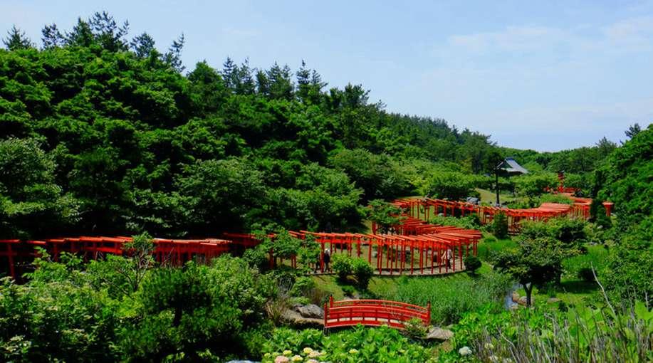 画像: 展望できる場所へ登ってみると、細長い庭に龍のように配置された千本鳥居。エネルギーありますね!