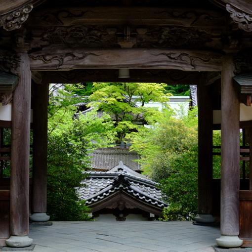 画像: 私たちは通ることができない「承陽門」は承陽殿から眺めることが出来ます。さらに奥には幾重にも重なる建物を見下ろし、承陽殿が高い場所にあることがわかります。