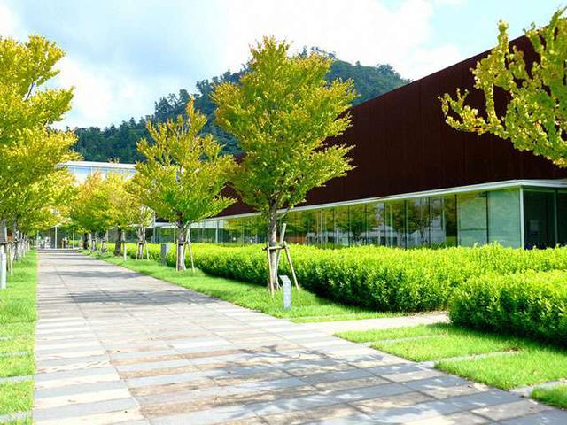 画像: 島根県立古代出雲歴史博物館へやってきました!