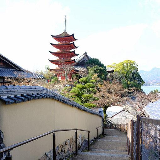 画像: 五重塔と千畳閣を見下ろす道は「光明院」へと続きます。