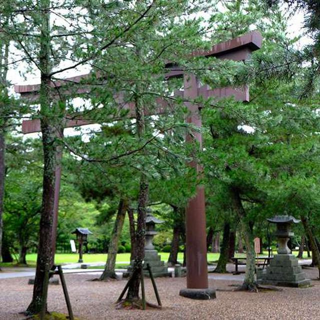 画像: 三の鳥居。鉄の鳥居です。ここから社殿までは松の参道となりますが、松の木保護のため、また中央は皇族や祭祀の際に使う道として、通常は両脇の道を使うことになっています。