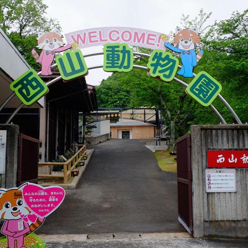 画像: 登りきったところには動物園があります。敷地面積が日本で一番小さいという「西山動物園」。