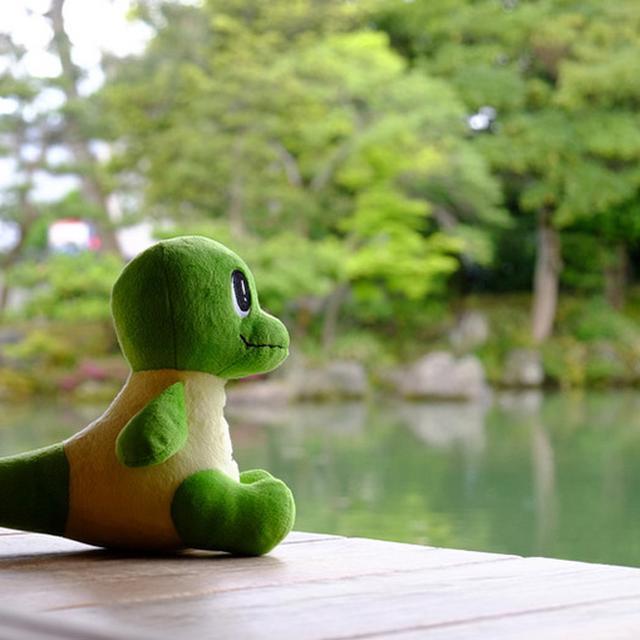 画像: 福井県公認キャラクターのラプトくんも涼しいと言ってます。