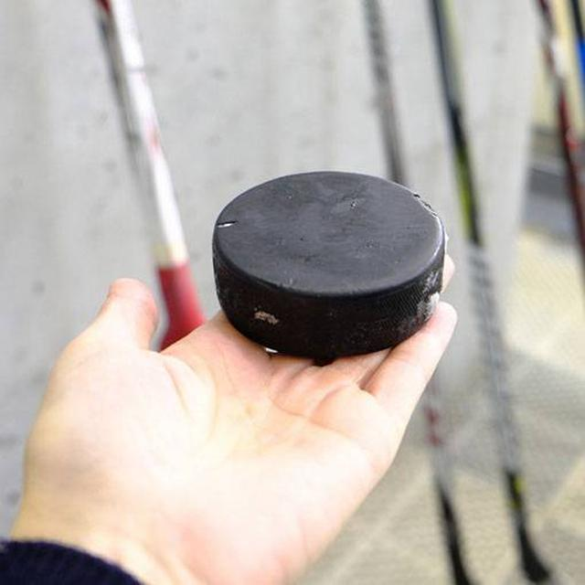 画像: こちらがパック。ずっしり重たい硬化ゴム。当たったら痛そう~