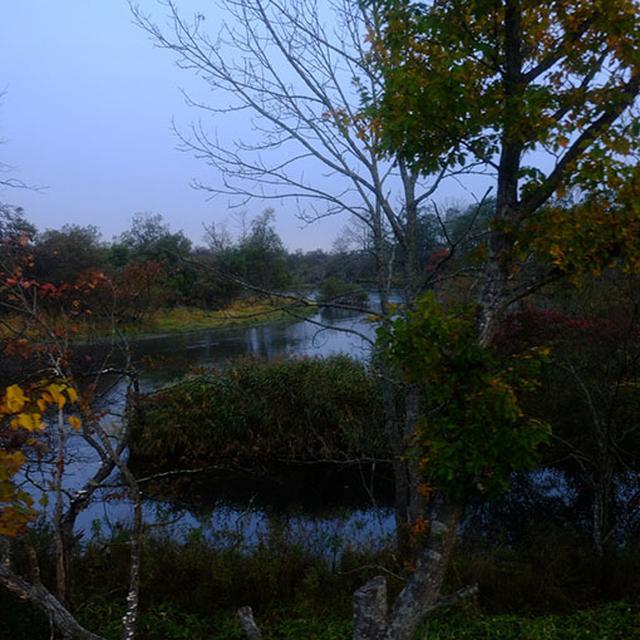 画像: しばらく走ると釧路湿原。いつかちゃんと訪れてみたい。