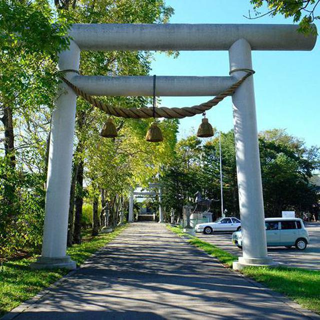 画像: 鳥取藩によるこの地域の開拓の歴史を学べる神社です。また祀られているのは出雲大社の神様なので、私の故郷・出雲と縁の深い神社なのです!