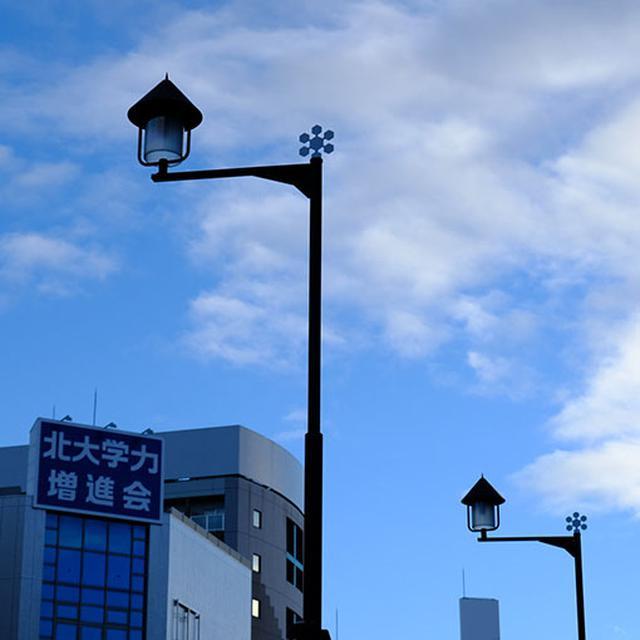 画像: 旭川駅から目指すのは旭橋。北海道でも指折りの寒冷地域である旭川。気象条件がそろうとダイヤモンドダストも見ることができる街。街灯にも雪のマーク。
