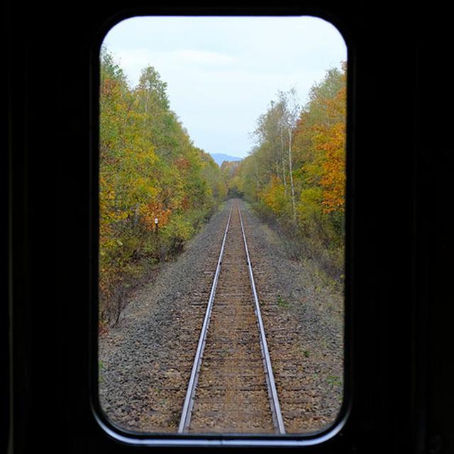 画像: ほとんどトンネルがない単線。両側は紅葉。