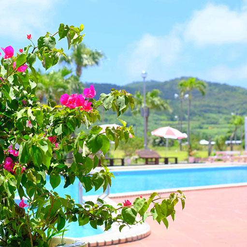 画像: 庭や花壇も整備されていて、南国ムード漂います。久米島の5月の平均気温は24℃くらいで梅雨時です。しかし私が滞在した間は一滴も雨が降らず28℃以上の気温の日が連続しました。
