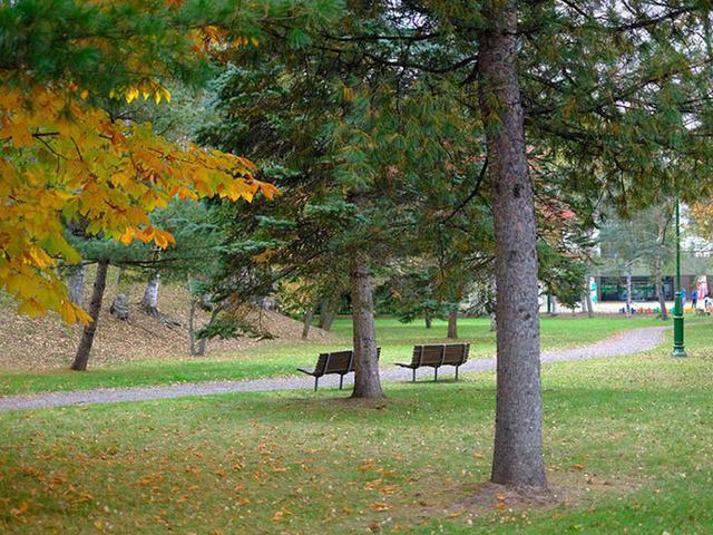 画像: 自然豊かな緑ヶ丘公園。北海道は公園もスケールが違う。大きいし広い。