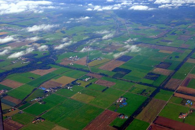 画像: 十勝の大地は天然のパッチワーク。どこまでも田畑が広がります。