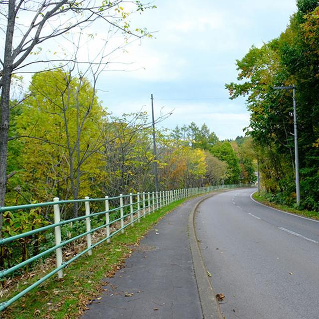 画像: 見学後、近くのカフェまで徒歩で向かいます。途中、両脇の森の中からもエゾリスの走り回る音がしていました。