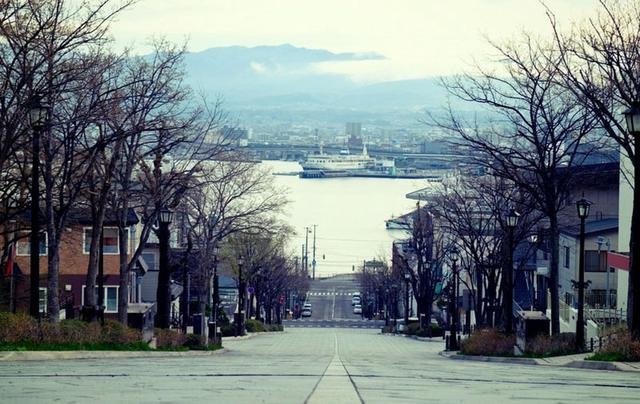 画像: 函館湾までまっすぐ伸びる八幡坂。函館を象徴する景色でもあります。