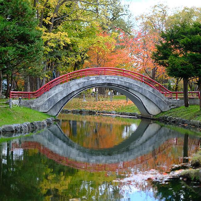 画像: 紅葉と赤い太鼓橋が美しかったです。池沿いに散策路が整備されていてのんびりするのにちょうど良いです。エゾリスも棲息しているようですよ。
