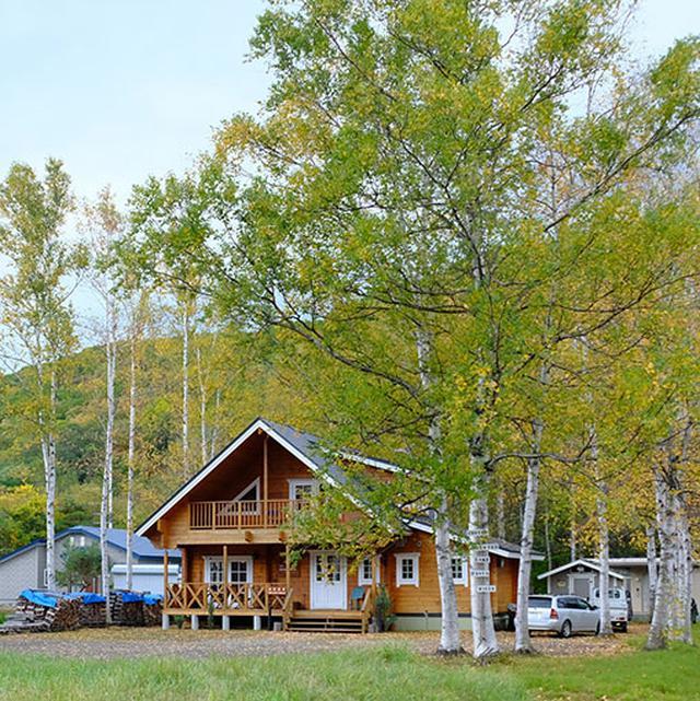 画像: 白樺の木立の陰から見えるログハウス。カフェ「グラスルーツ」へお邪魔します。