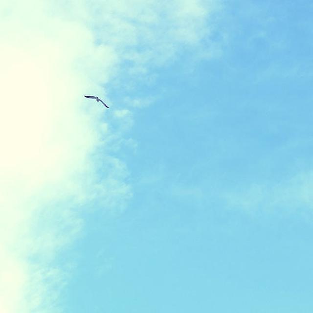 画像: 前日までの雨が洗い流してくれて、きれいな青空が見えました。