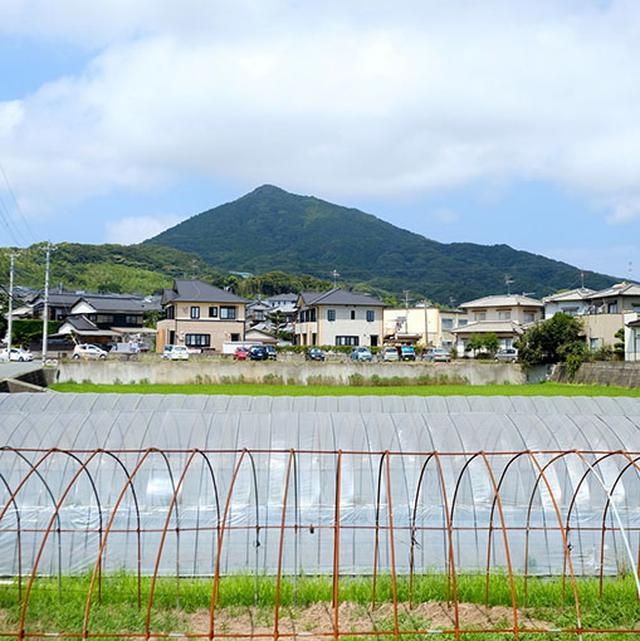 """画像: 街を抜けると田畑が広がるエリア!ここで可也山(かやさん)がちらりと見えました。糸島のシンボル的な山で、""""糸島富士""""とも呼ばれ市民に愛されています。"""
