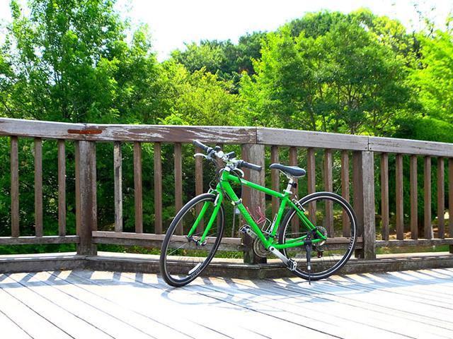 画像: 今回自転車でまわったところはどこも坂が少なく、電動自転車でなくても十分でした。今回のレポートは、自転車往復およそ30キロの旅です。