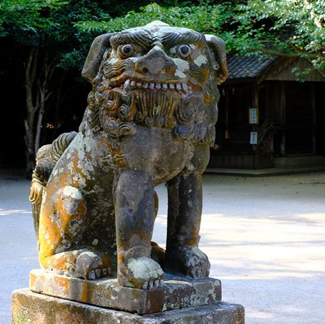画像: そんなことでとても由緒ある神社なのですが、ユーモラスな狛犬も必見です。