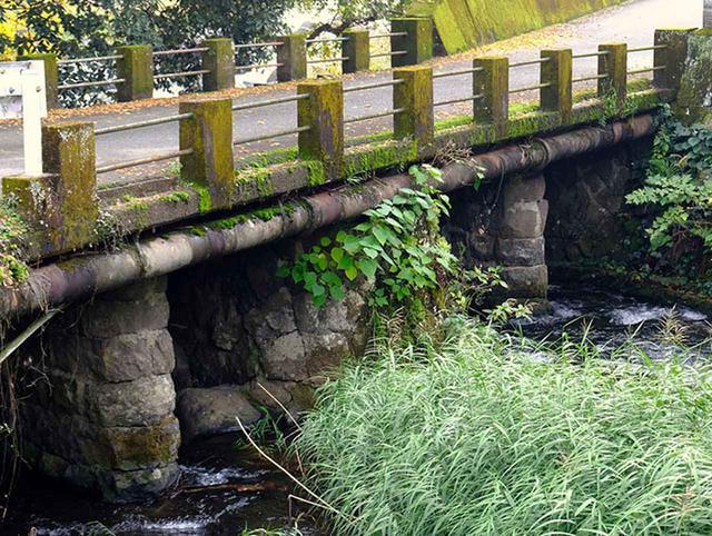 画像: 菊池川との合流地点。立派な石橋がありました!4つの橋脚を持つのは水量が多いということなのでしょうか。