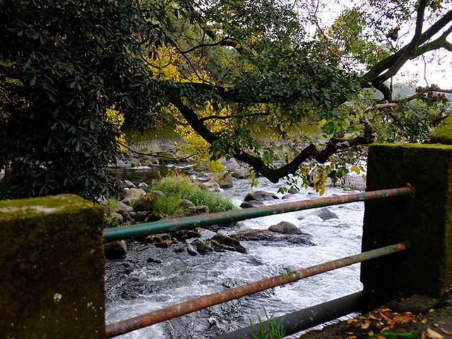 画像: 一級河川菊池川へ流れ込みます。