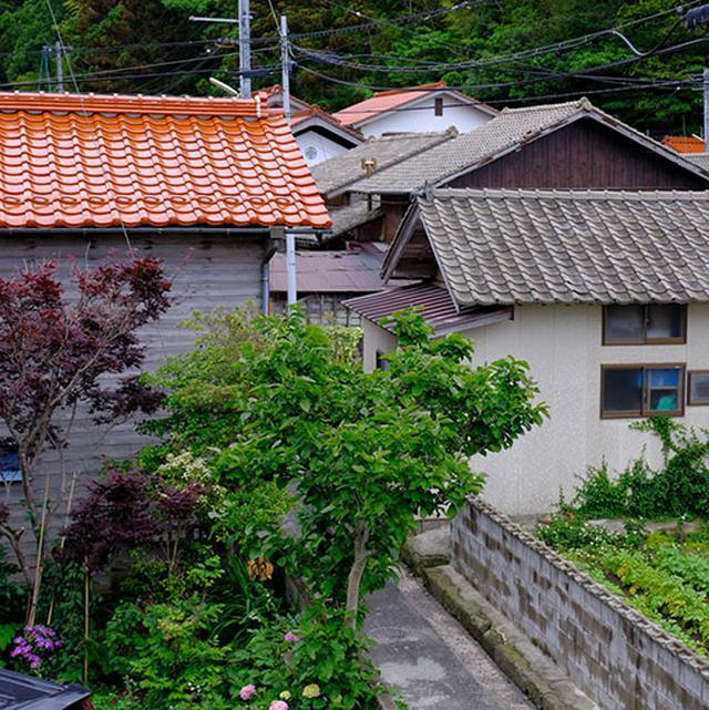 画像: 隠岐の島は瓦の家も多いです。黒瓦に混じり赤瓦の家も多く、島根らしくて嬉しくなります。