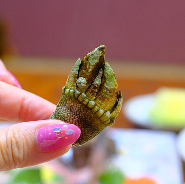 画像: お吸い物はカメノテ。「ガオー!」って感じのカメノテ、あまり見たことがない人もいらっしゃるかもしれません。岩場などにくっつく貝の種類でちょっとグロテスク?爪みたいに見えるところは食べないで、指で持っているところを剥いて食べます。磯の香りたっぷり。