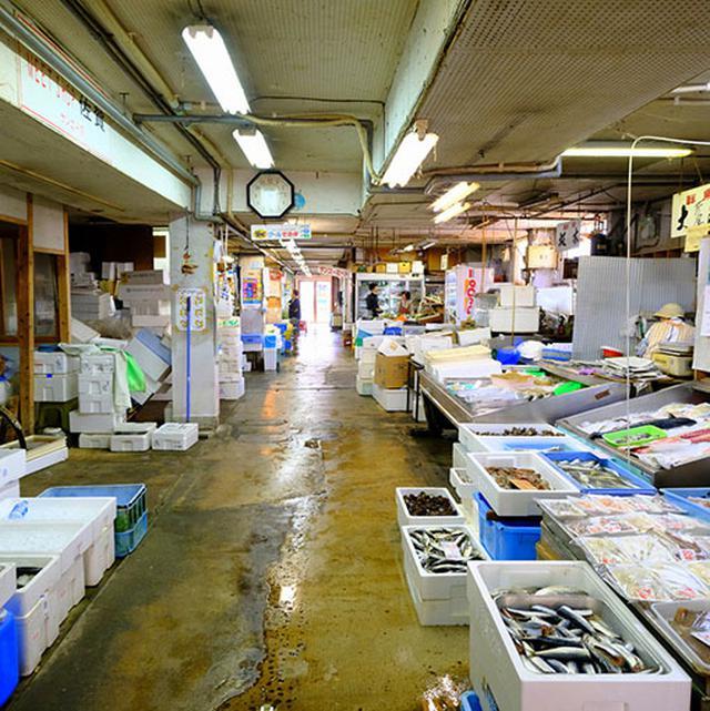 画像: 新鮮な魚介が扱われていました。佐賀の食材の豊かさを感じました!