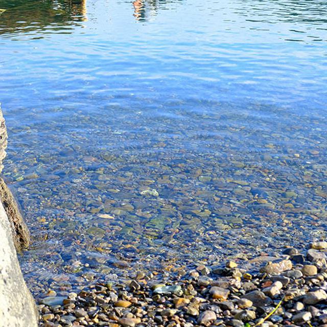 画像: これくらい透明だと、魚が泳いでいるのも良く見えます。