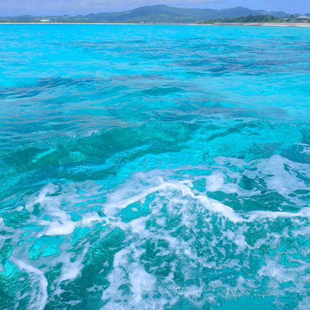 画像: 海底が真っ白な砂浜である海域に太陽の光が差し込むとバスクリン色に!エメラルドを超えてターコイズブルー。この周辺では天然もずくの育成と、もずく養殖が盛んです。