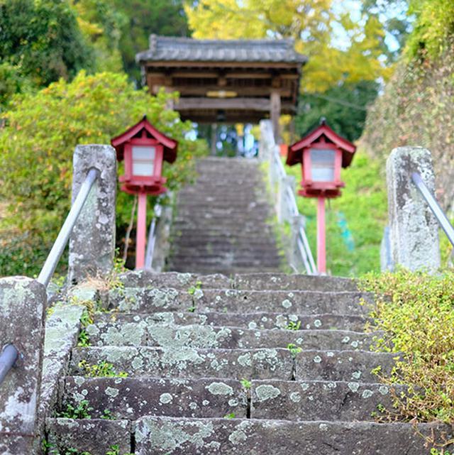 画像: 長い階段の「東福寺」。登りきるとのどかに広がる田畑を見渡せます。