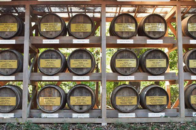 画像2: つい眺めてしまう、各地から奉納された日本酒とワイン