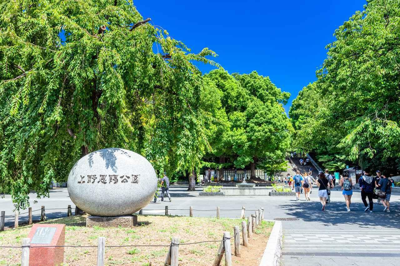 画像: 上野観光に外せない!おすすめスポット21選。エリア別で街歩きにも便利