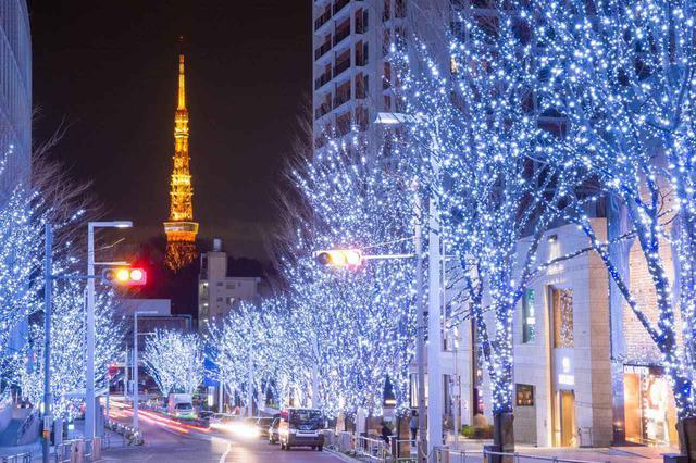 画像: C【銀座&六本木】モードでアートな大人の街さんぽ