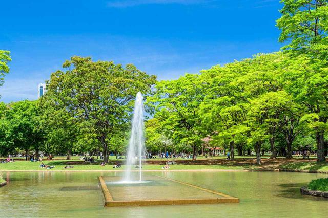 画像: B-4「代々木公園」はイベントで賑わう休日がおすすめ