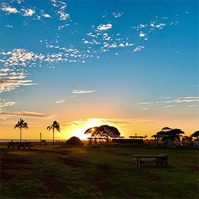 画像1: (ハワイ)現地スタッフが体験!~Halepuna Waikiki by Halekulani~