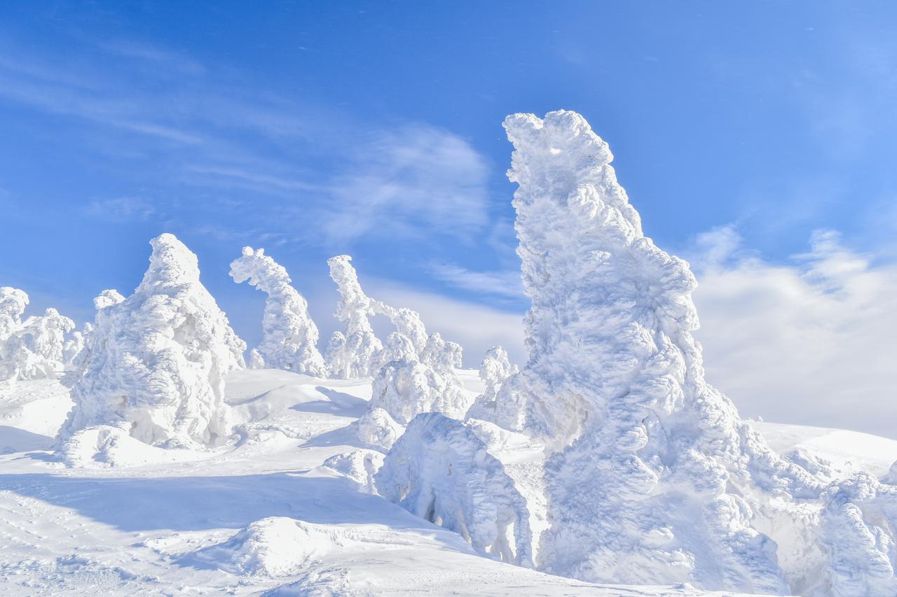 画像1: 絶景スポット(1)森吉山 阿仁スキー場|日本三大樹氷観賞地は見逃せない