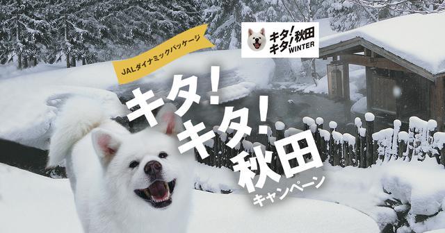 画像: JALダイナミックパッケージ キタ!キタ!秋田 キャンペーン