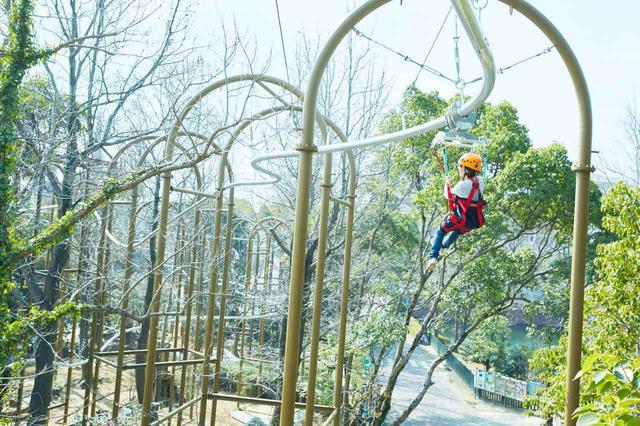 画像: 1.森を駆け抜ける爽快感を味わう「天空レールコースター ~疾風~」